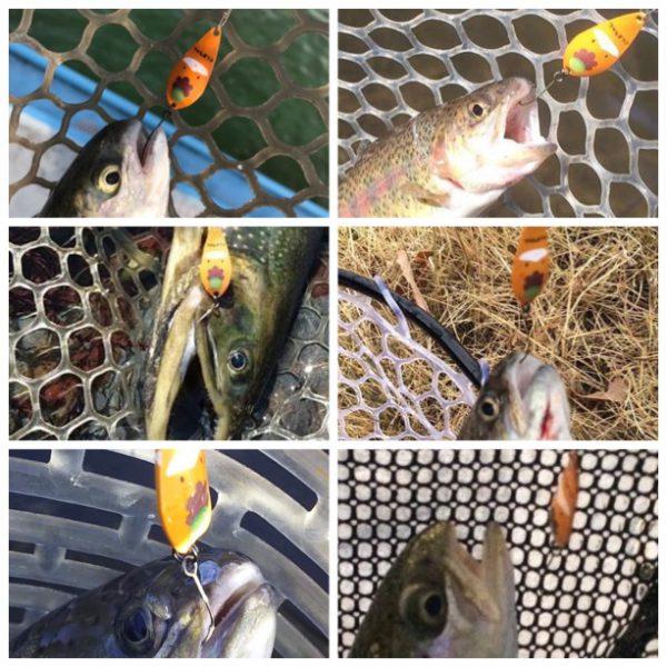 ぐんまちゃんで釣りました#1