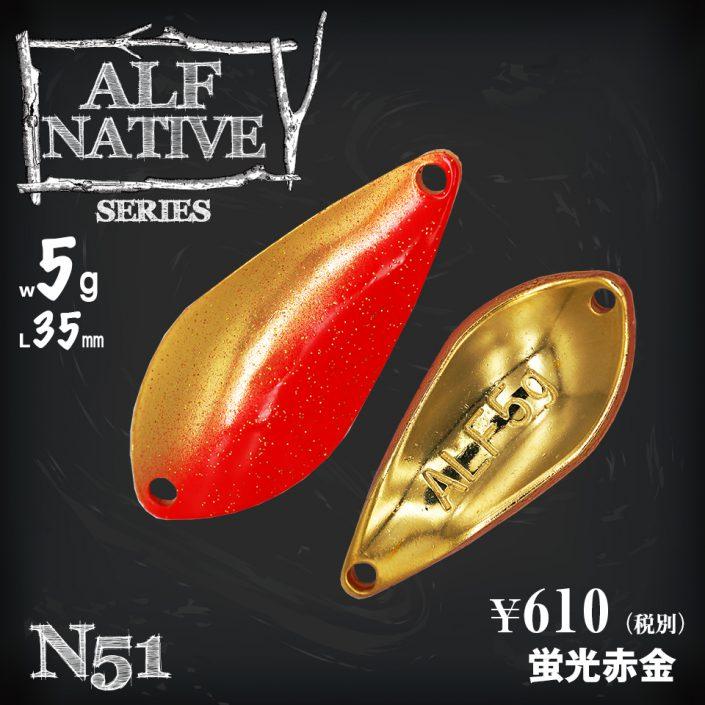 5g_N51