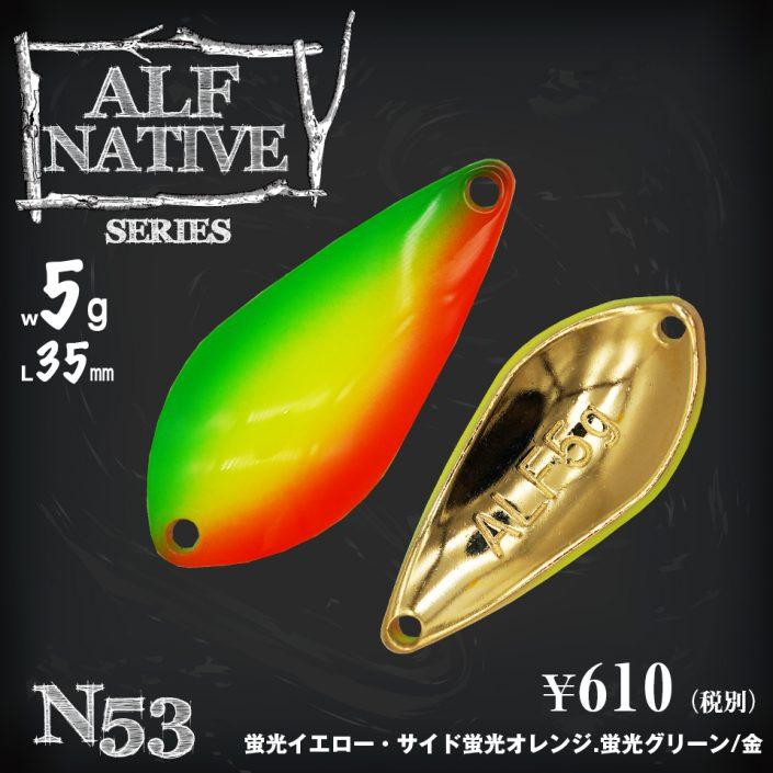5g_N53