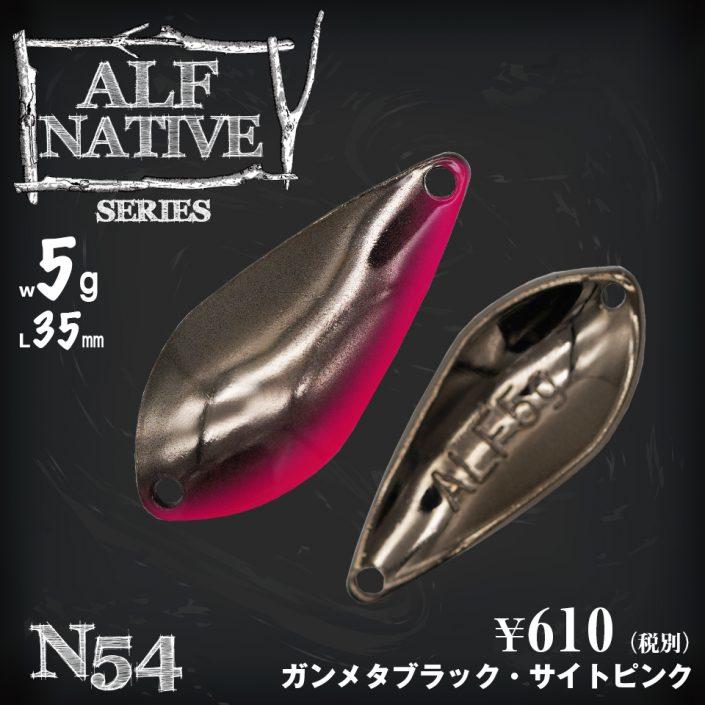 5g_N54